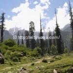 Гималаи на севере Индии