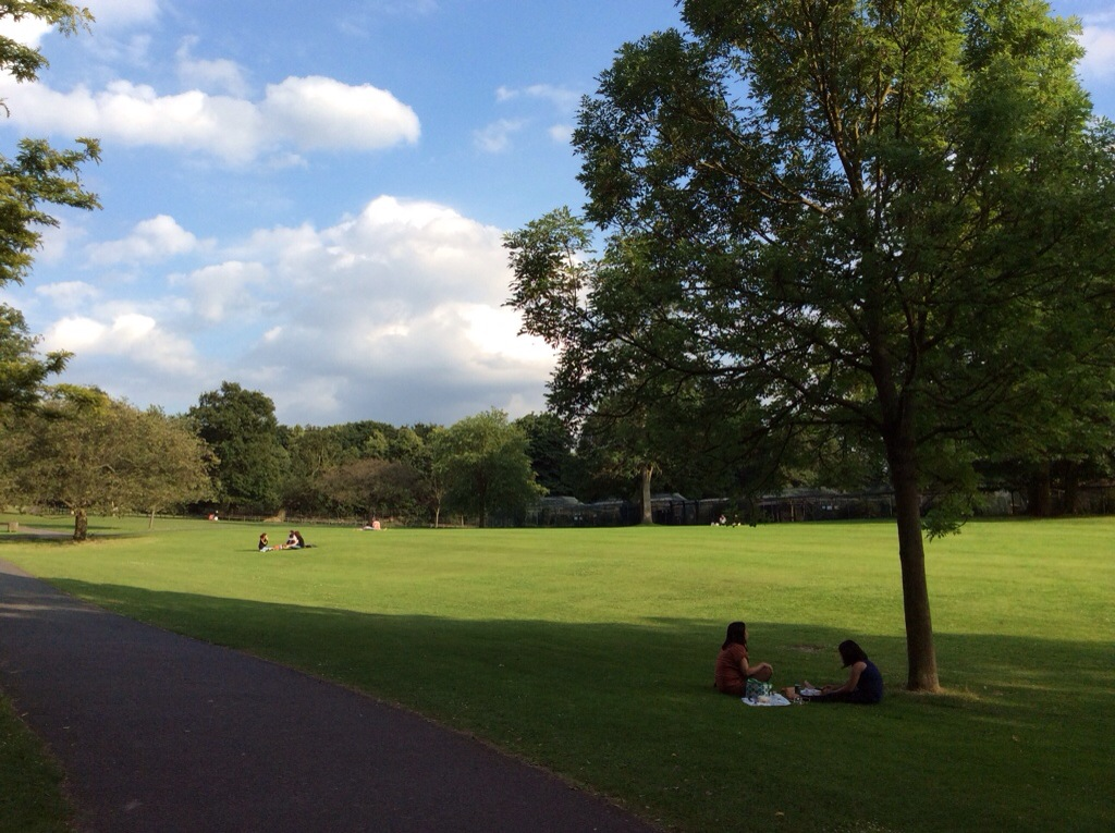yoga and picnic in Hyde Park