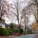 Фото природы осенью. Лондон.