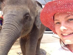 Селфи со слоном